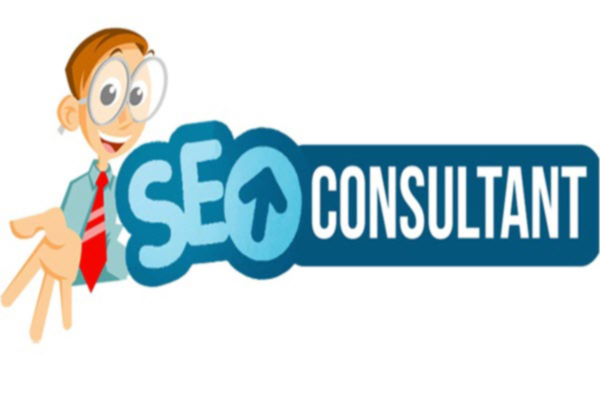 Who-is-the-consultant-of-SEO